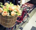 flowers on vintage bicycle_SDq0Axunfe