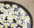 a close up shot of decorative flowers floating on water surface_BwM KkdhMg