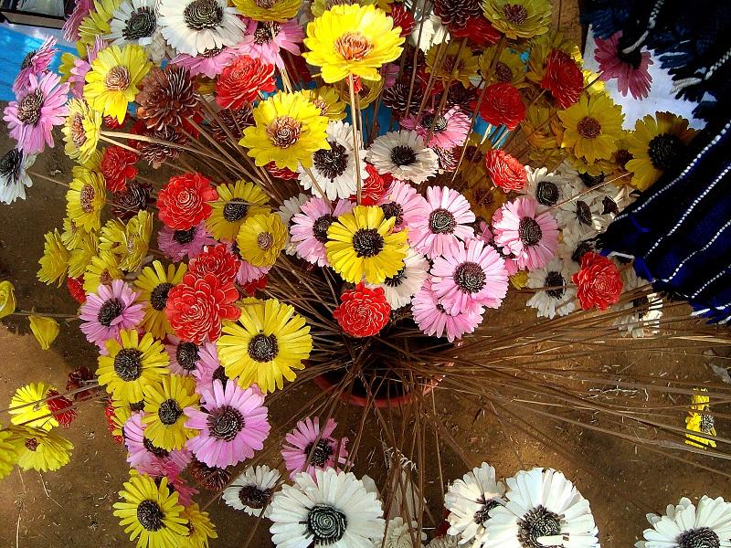 colorful flowers_f1J3FU