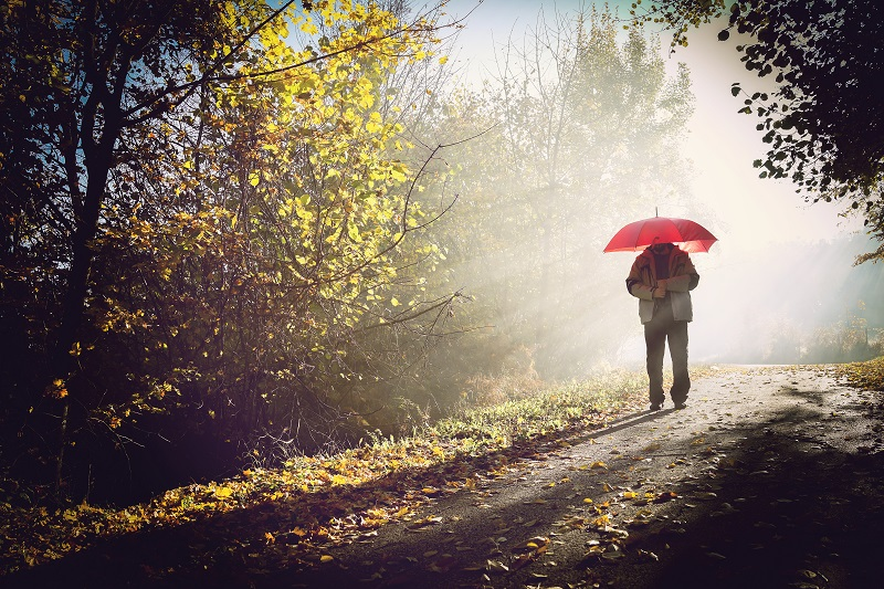 couple in beautiful foggy and sunny mysterious nature_HFnq6TTBo