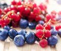 berry 1 5