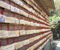 kamakura april 13 wooden prayer tablets hanging inside a hase kannon temple on april 13 2012 in kamakura kanagawa japan_HwGMugunzl