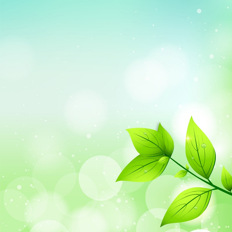 abstract nature background with fresh green leaves_M1Im5Mau_L