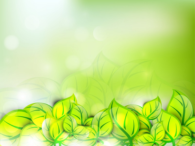 abstract nature coincept with fresh green leaves on shiny background_X1QAJX_L
