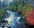 autum river_GJ4gr8O
