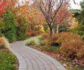 autumn pathway_GyWaBIuu