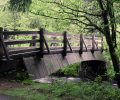 creek bridge_zk4wqI_d