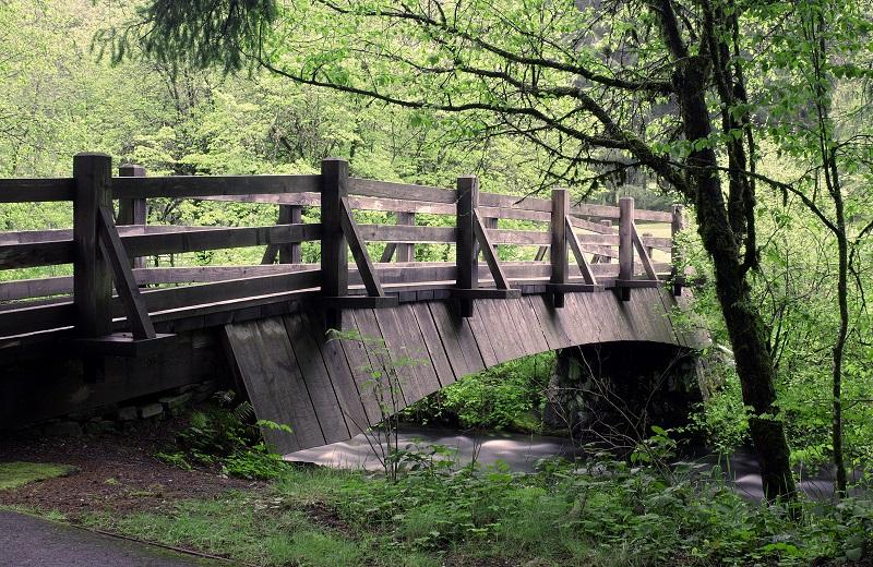 creek bridge_zk4wqI_d