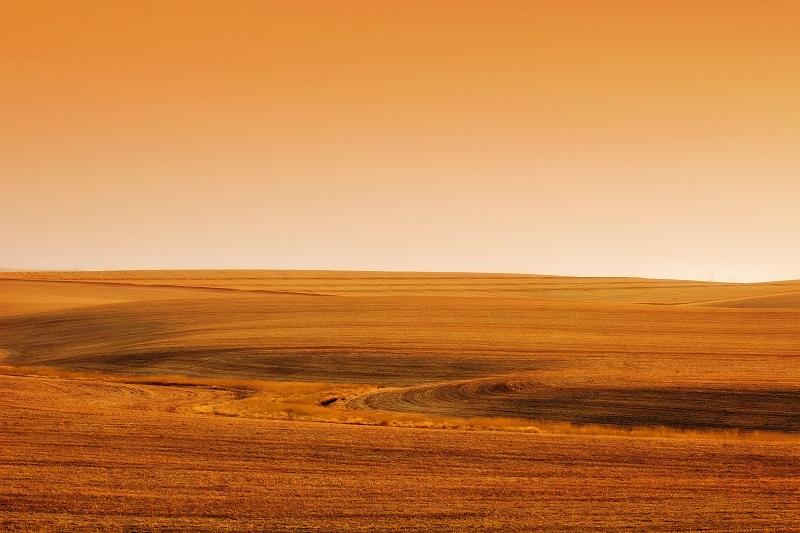 desert background_zyEo33vO