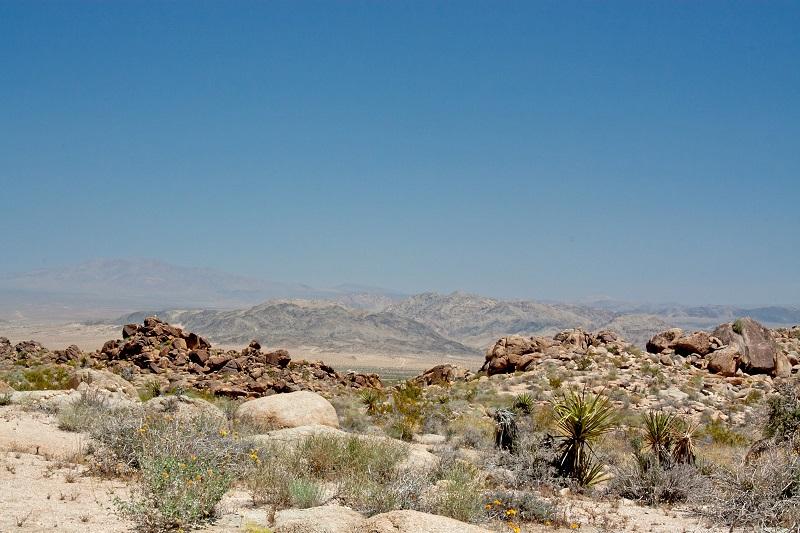 desert landscape_MkUtjI