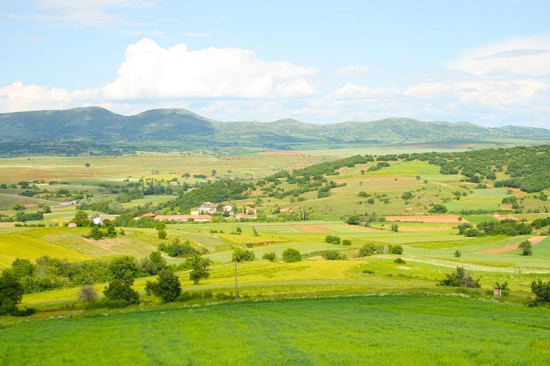 green fields_GJIFwIvu