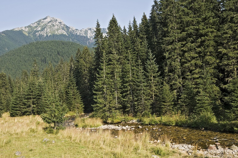 high polish tatra mountains background_MyuSgwO
