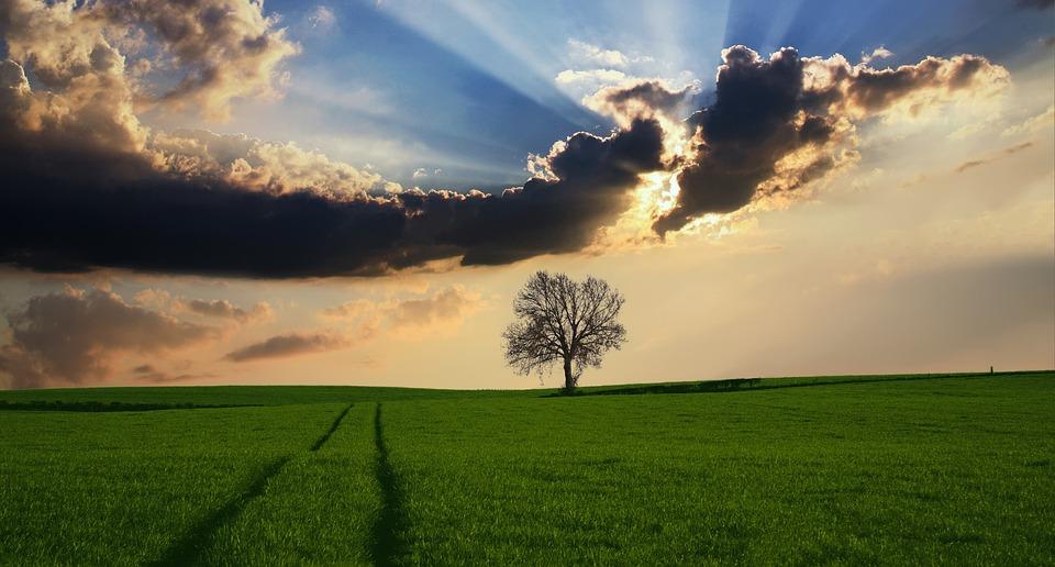 對已經存在生命中的一切坦然接受並泰然處之,把握當下每一刻