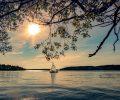 summer-1458129_1280