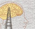 brain-3535300_1280