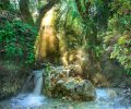 rainforest-3119822_960_720
